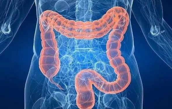 肠功能障碍